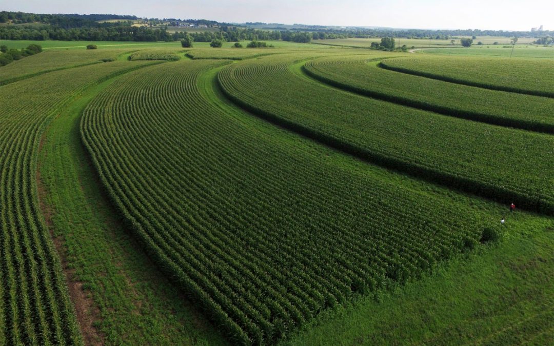 How to Stimulate Green Farming