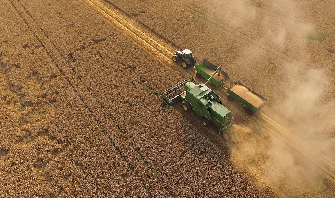 6 Changes we Need to Improve Modern Agriculture