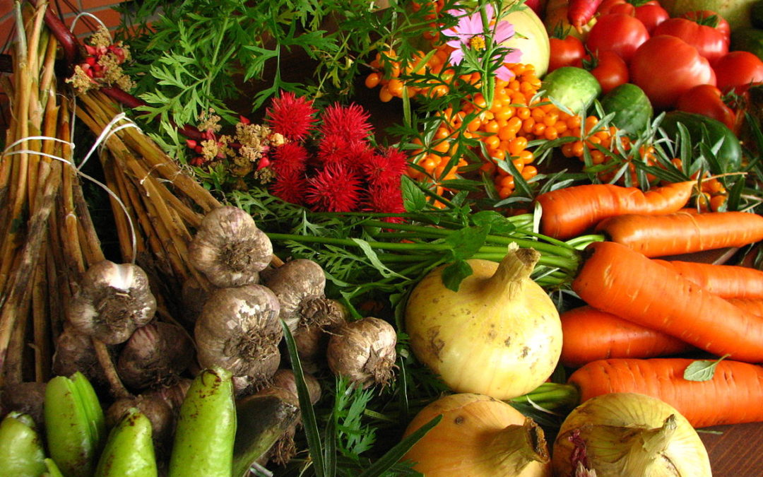 Promoting Organically-Farmed Produce