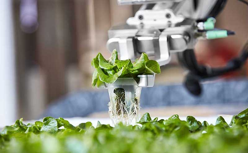 Automation and green farming