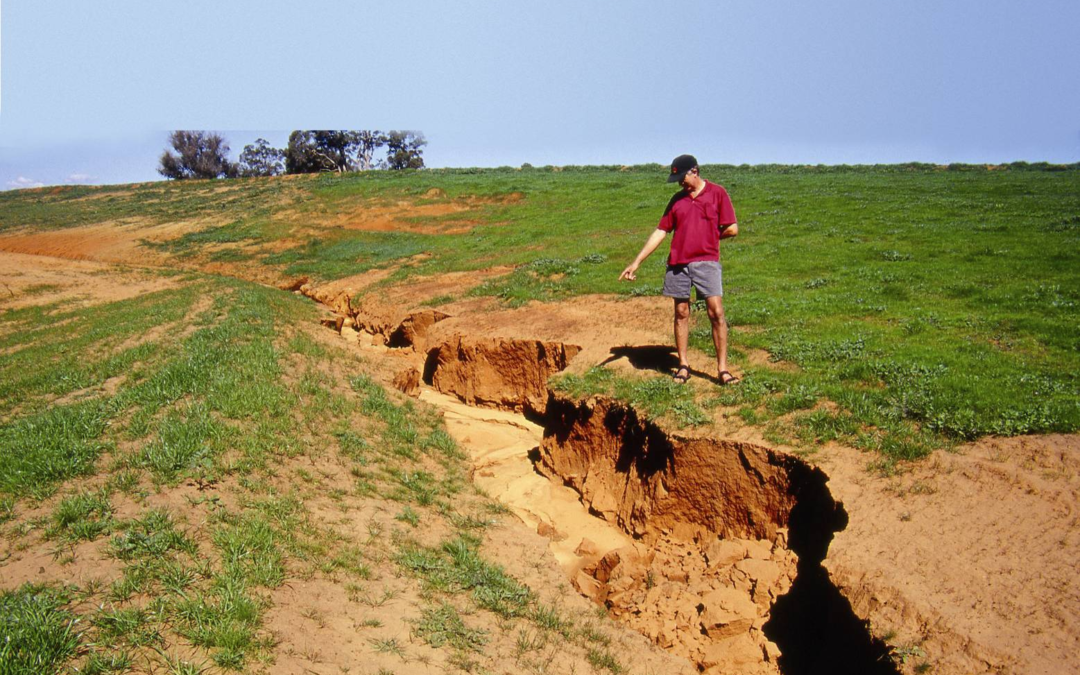 6 Tips on Repairing Soil Erosion