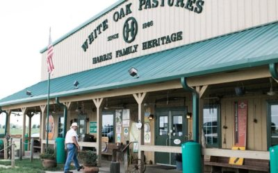Bringing American Meat Suppliers Back Home